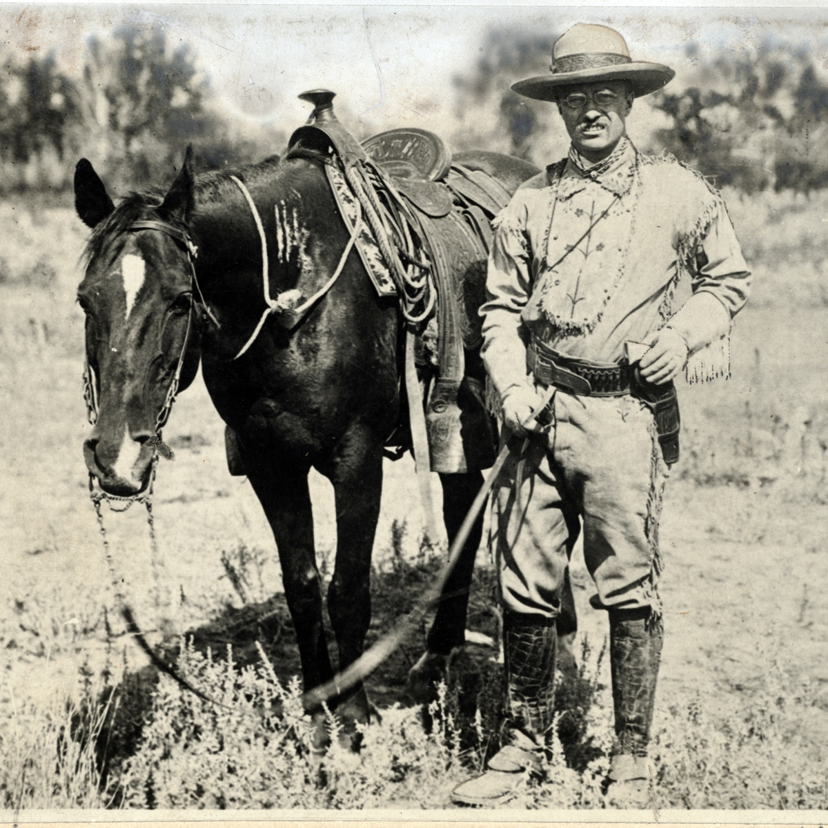 Image result for theodore roosevelt