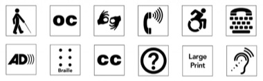 Twelve accessibility icons that link to detailed accessibility information.