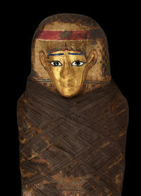 The Gilded Lady - a well-preserved mummy from Egypt - on display at the American Museum of Natural History