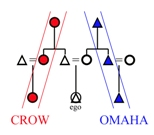 Exemplary lineal equations in Crow-Omaha kin terminologies