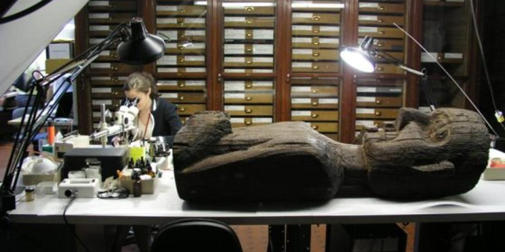 Anthropological Objects Conservation | AMNH