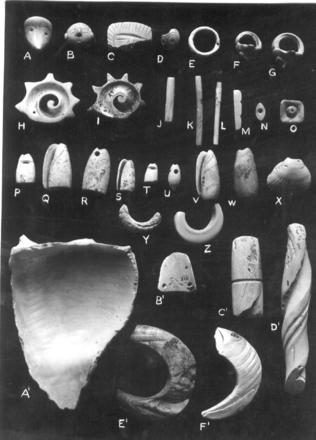 Sample of Objects in the Ekholm Collection, Tampico-Panuco Region (as classified by Ekholm)