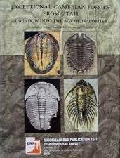 Exceptional Cambrian Fossils from Utah 2 image