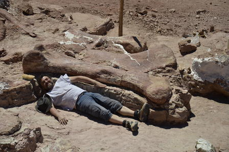 A person lies on the sand next to an 8-foot dinosaur femur to demonstrate it's size.