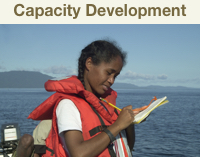 capacity development landing page trial