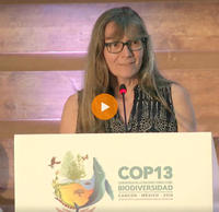 Dr. Eleanor Sterling giving a presentation at the CBD COP 13