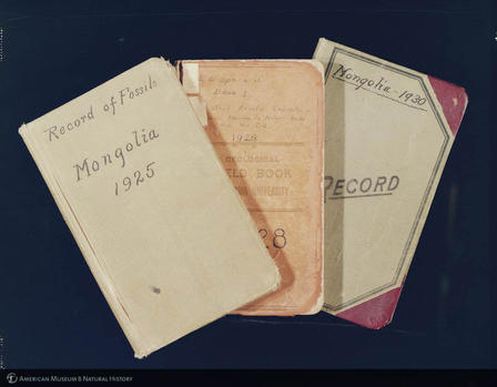 Photograph of field notebooks from the Central Asiatic Expedition