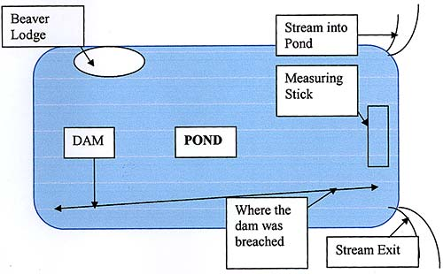 Figure 4: Diagram of Pond]
