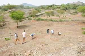 The team begins the first day of fossil hunting at the Kiahera site on Rusinga Island.  Photo courtesy of W. Harcourt-Smith.