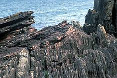 Hutton's Unconformity, Siccar Point, Scotland (c) Marli Miller / Visuals Unlimited