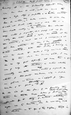 Origin Manuscript by Charles Darwin, February-July 1844 ©The Syndics of Cambridge University Library DAR 7