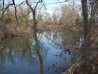 Photo of the third of four test sites in the Strawberry River in Arkansas