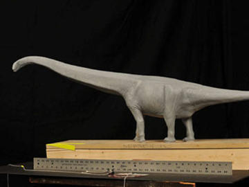Mamenchisaurus hochuanensis model