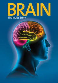 Marketing Brain for Preview