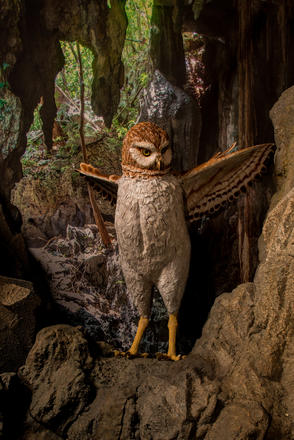 1231fa4bfc631f A 39-inch-tall life-sized model of Cuba s extinct giant owl
