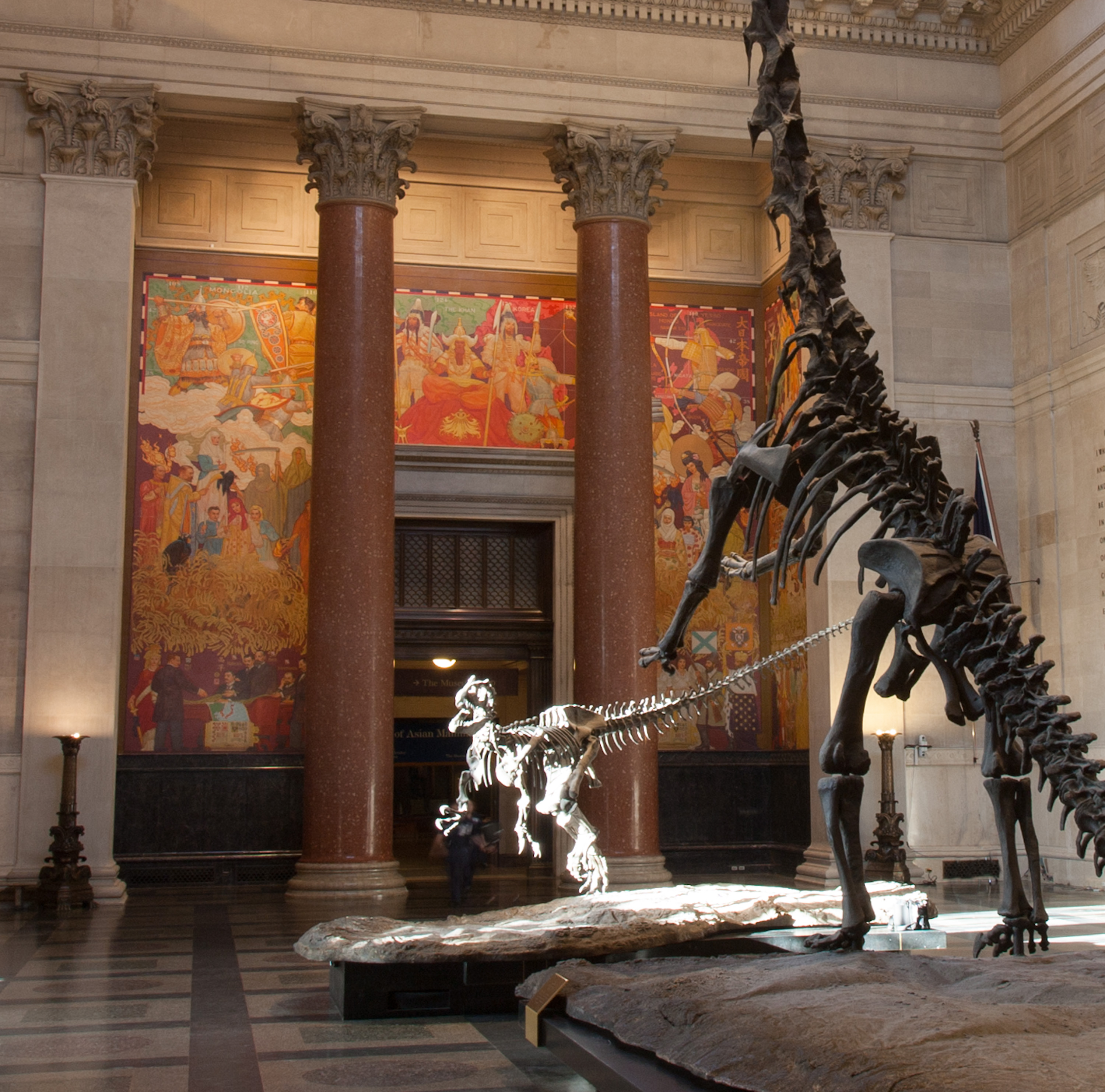 Check out more apps from the American Museum of Natural History