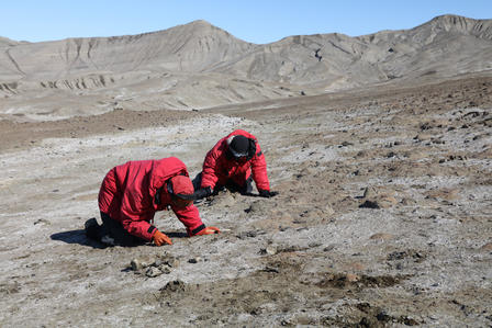 Paleontologists in Antarctica