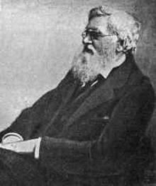 Photograph of naturalist-explorer Alfred Russell Wallace, seated and  in profile