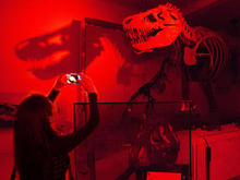 In a darkly lit hall, a sleepover guest uses a camera phone to take a photo of a dinosaur.