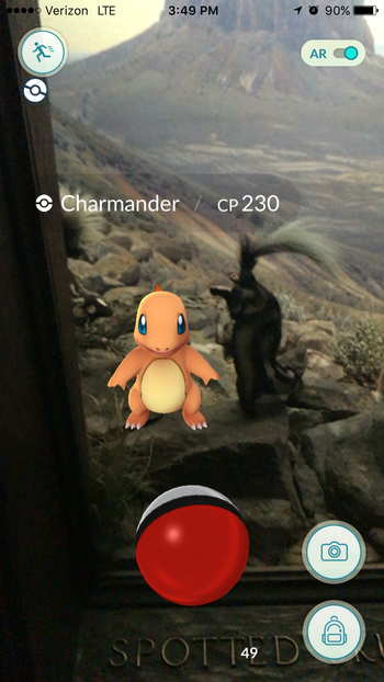 Charmander in Skunk diorama