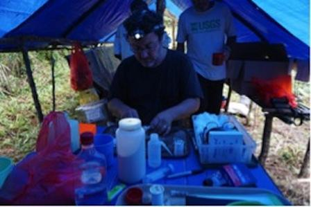 A field tent with sides rolled up. A man wearing headlamp handles containers and supplies at a table inside.