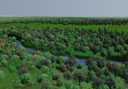 A computer reconstruction of what the Bronx River may have looked like in 1609. The site is about three kilmometers upstream of the river mouth where a concrete plant was eventually built. The factory is now abandoned and is being restored with native vegetation as a public park.Markley Boyer/Wildlife Conservation Society