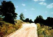 The less improved a road, the less susceptible its edges are to weed invasion.NASA
