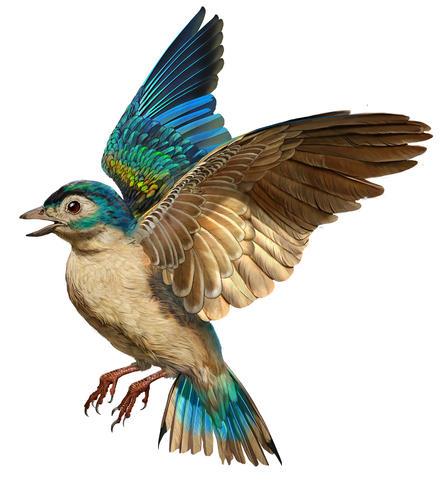 dinosaur feathers to bird flight