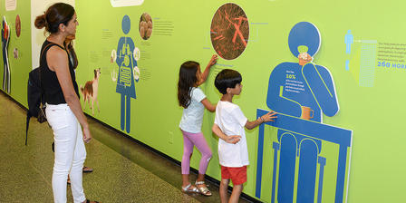Two adults and two children look at an exhibition wall displaying photos of bacteria and graphics of human-shaped figures with descriptive text.