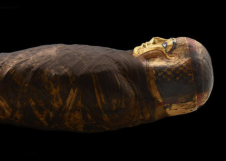 Side horizontal view of upper body and head of mummy, covered in dark wrappings with a gilded face.