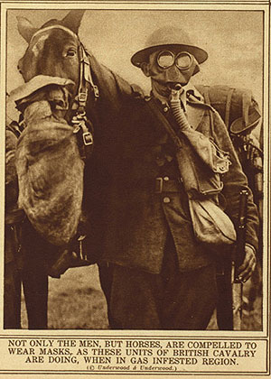 Horse and soldier in gas masks. Library of Congress
