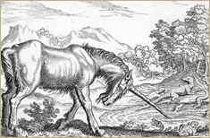 Unicorn and reptiles, 17th c. engraving © Mary Evans Picture Library