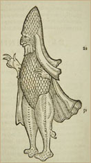 """Sea bishop,"" from a 1575 book by Swiss naturalist Konrad Gesner. American Museum of Natural History Library RF-29-E"