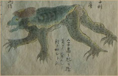 Drawing of a kappa, a Japanese water imp, 1836. Credit: Wikipedia.org