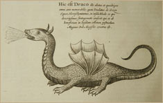 Dragon illustrations from 1678 book by German naturalist Athanasius Kircher © D. Finnin/American Museum of Natural History Library