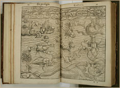 Illustrations from a 1557 book by Konrad Lykosthenes, a German encyclopedia writer American Museum of Natural History Library B-6