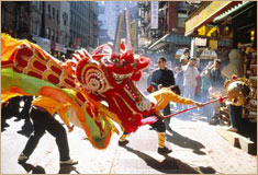 Dragon Dance is performed in celebration of Chinese New Year, Chinatown, New York City. © Vanessa Vick/Photo Researchers