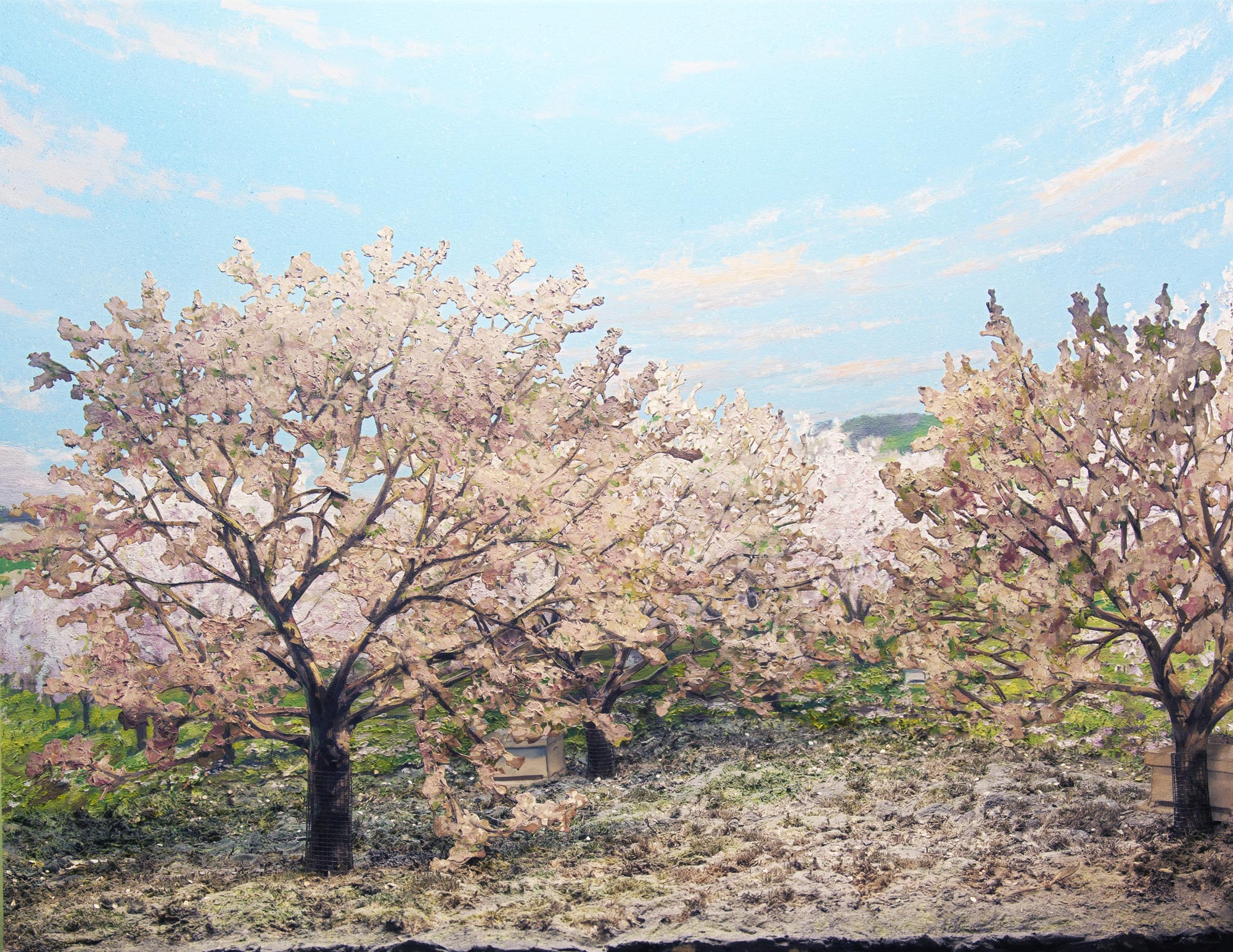 Diorama of a flowering apple orchard.
