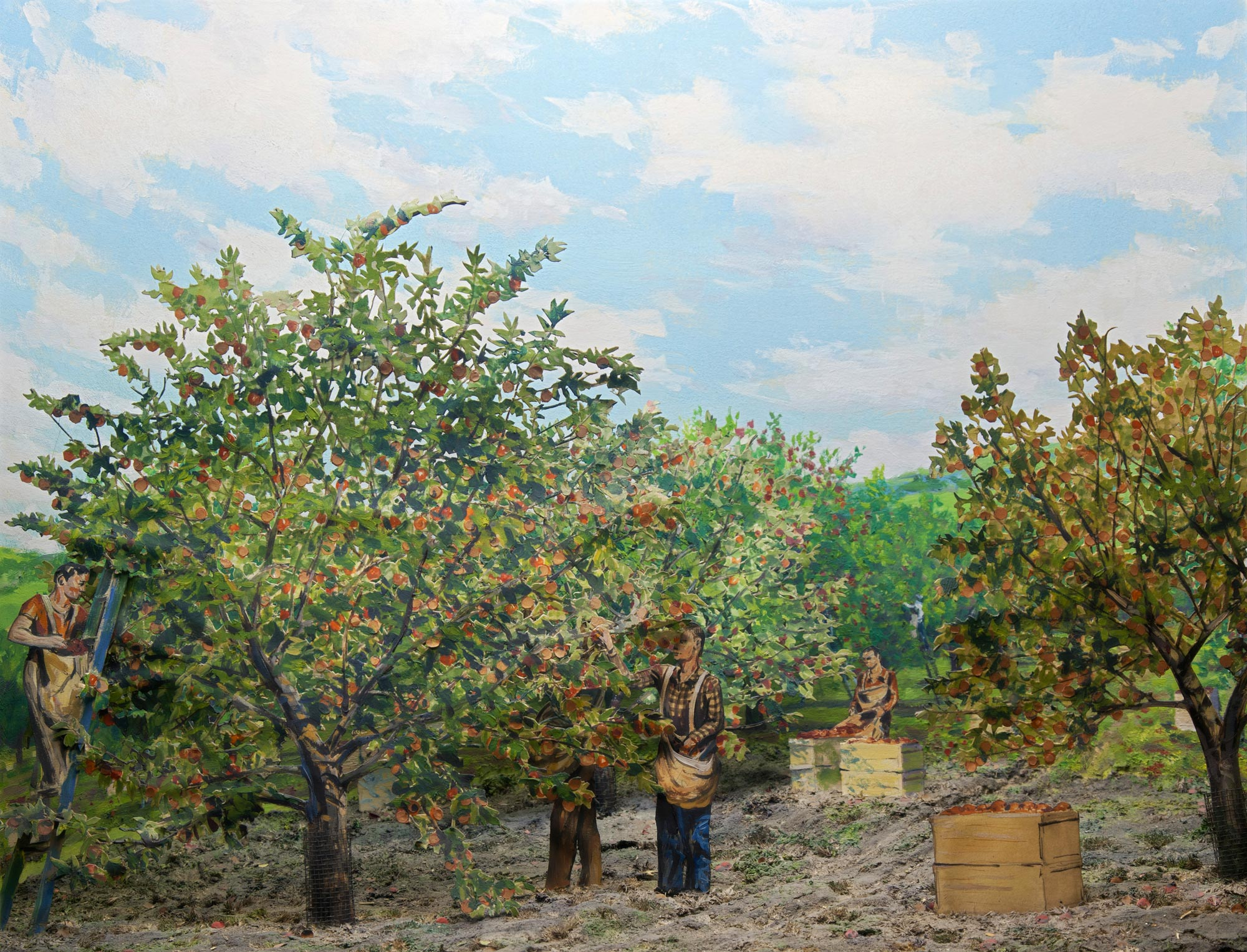 Diorama showing the harvest of an apple orchard.