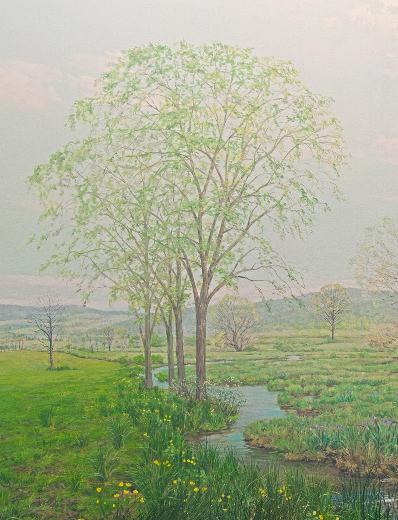 Section of a painting in the back of a diorama showing an American elm