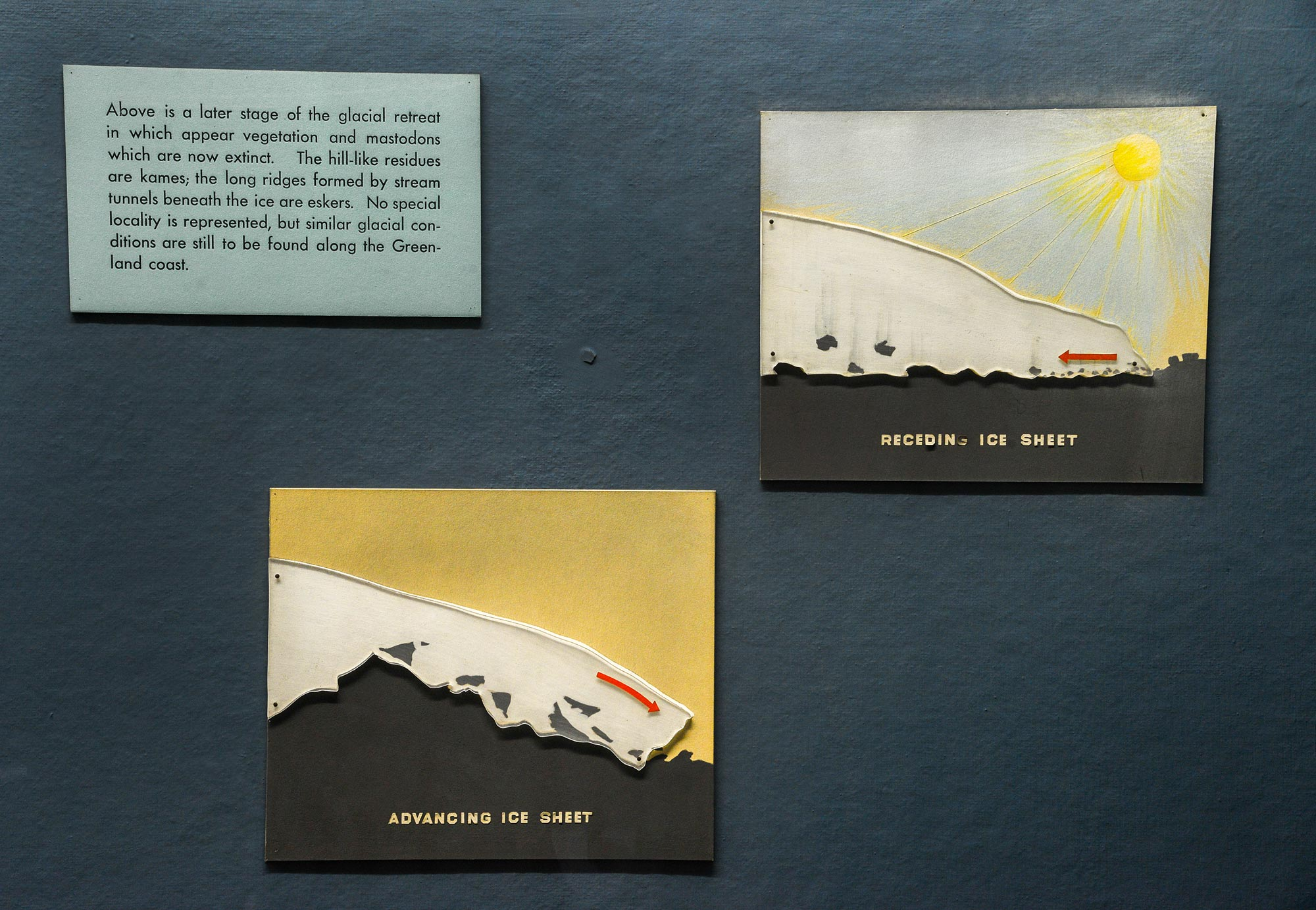 Section of a museum case showing text and illustrations about the receding ice sheet.
