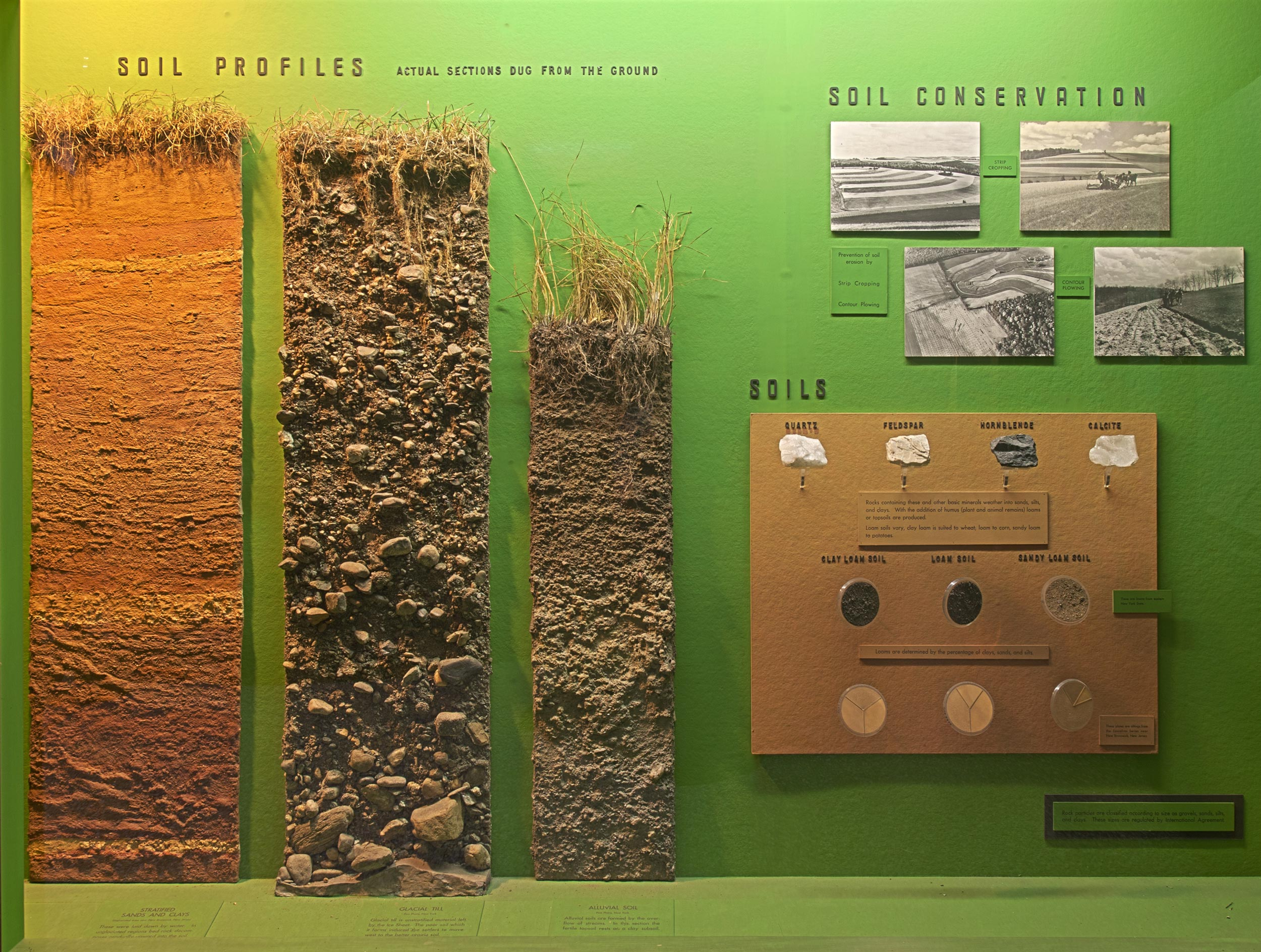 Exhibition case showing several soil profiles (actual sections dug from the soil), pictures about soil conservation and samples of soil.