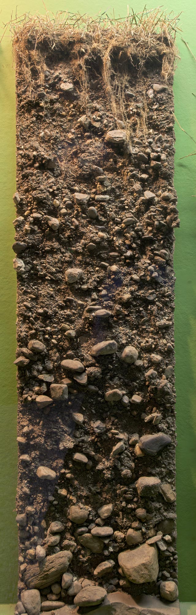 Soil profile of stratified glacial till