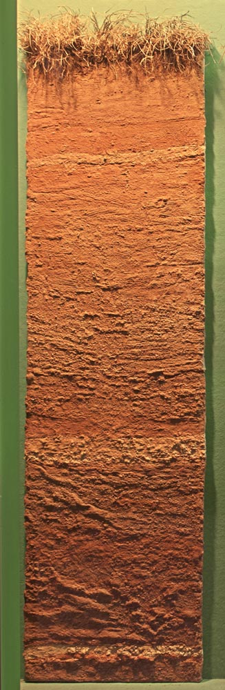 Soil profile of stratified sand clay