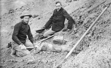 Barnum Brown wears a hat, holds a pick-axe, and kneels next to large fossilized bones; Henry Osborn, hat in hand, sits nearby.