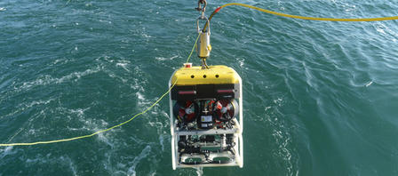DeepReef-ROV holds a suite of high-definition video cameras customized for underwater low-light conditions.