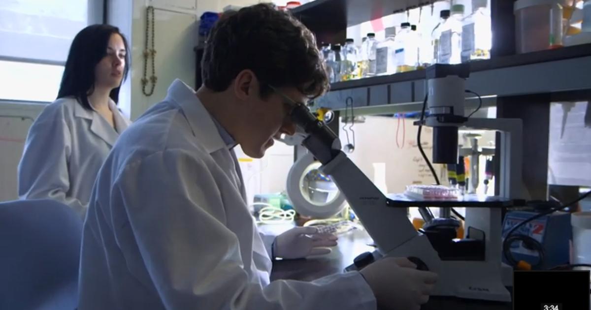 Bacteria Evolving: Tracing the Origins of a MRSA Epidemic | AMNH