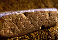 This 72,000-year-old chunk of etched ochre found at Blombos Cave is the work of a modern human mind. Courtesy C. Henshilwood and F. D'Errico