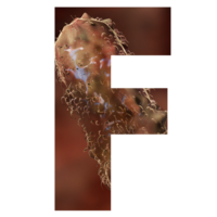 The letter F, cut out from a picture of the cone-shaped Lactobacillus bacterium