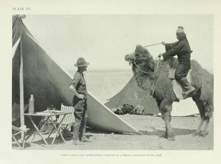 Image result for images of amnh central asia expeditions